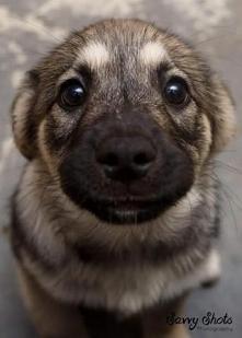 Czy te oczy mogą kłamać? ;-)