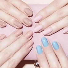 Jak zrobić profesjonalny manicure w domu?