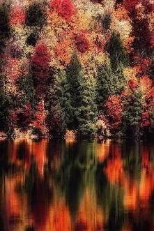 Jesienny krajobraz <3