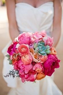 róż i zieleń