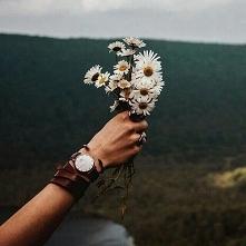 ostatnio coraz bardziej podobają mi się te kwiatki :)