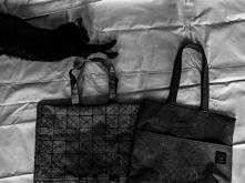 Zestaw - ekologiczna torebka + czarny kot :D   Zapraszam do mojego sklepu na DaWanda -> MONEST