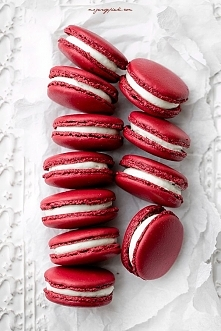 MAKARONIKI RED VELVET