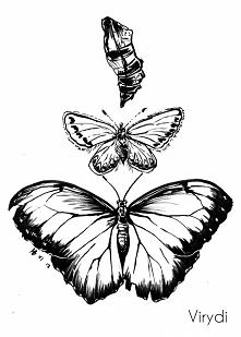Inktober day 21 - butterflies