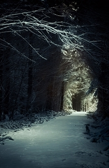Follow the light...