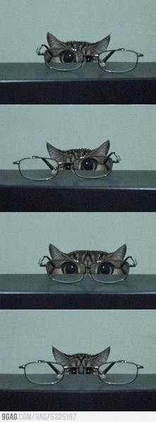 Tak to jest, gdy oczy szwankują :-)