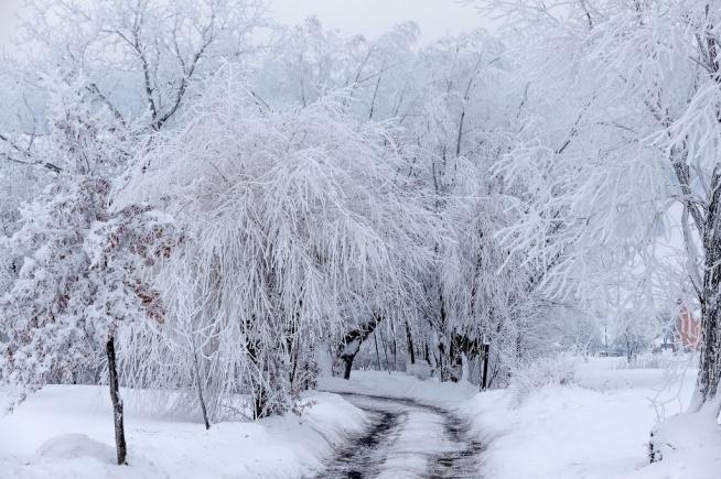 Długi, zimowy, świąteczny rodzinny spacer: -wiele chęci -zero stresu -obowiązkowe czapki i rękawiczki -1 para sanek -1 aparat fotograficzny -1 długa droga, najlepiej przy lesie z pieknymi widokami -sporo uśmiechów -dużo spokoju -ogromnie dużo radości