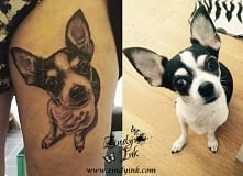Chihuahua dog tattoo