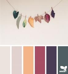 Palety kolorów <3