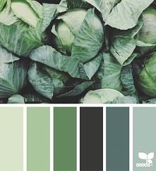 paleta kolorów <3