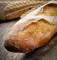 Chleb babuni