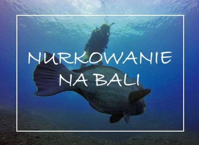 Mówiąc o nurkowaniu na Bali, najczęściej mamy na myśli wyspy Lombok oraz Gili. I faktycznie jest to chyba najpopularniejsza destynacja. Jednak my wybraliśmy się w zupełnie inną stronę, mianowicie w rejon Tulamben, położony w północno-wschodniej części wyspy.