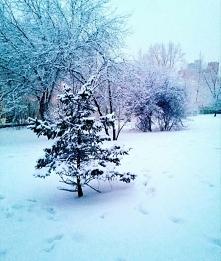 Zima co prawda jeszcze nie przyszła, ani ta prawdziwa, ani ta kalendarzowa. A o 2 miesięcy wszyscy w gazetach rozpisywali się, że to będzie najostrzejsza zima... buuuuu! Chcę śn...