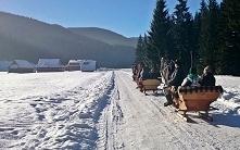 Śnieg dodaje świętom niepowtarzalnej magii. A do tego te kuligi zimowymi popo...