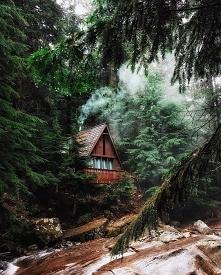 Chata w pobliżu Franklin Falls Trail, Waszyngton, USA