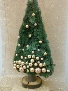 Choineczka, żywe cudo, ciekawa alternatywa klasycznego drzewka