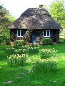 Mały dom wygląda jak krasnoludzki dom♥
