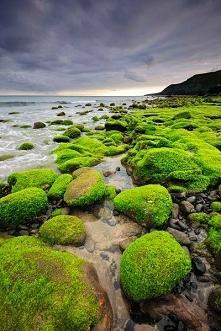 Azory, Portugalia