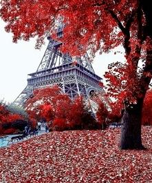 Beautiful♥