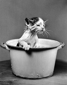 Kąpiel w mleczku. ;-)
