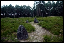 Kamienne Kręgi w Odrach to miejsce, które spodoba się szczególnie miłośnikom tajemnic. Kto zbudował i do czego służyły tajemnicze kręgi utworzone z wielkich głazów.