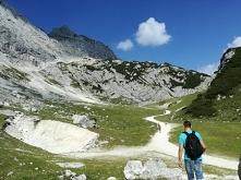 Niemcy, Alpy