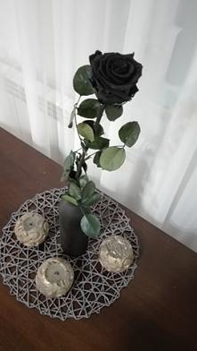 Black rose <3