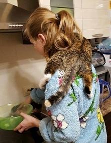 pomoc kuchenna!