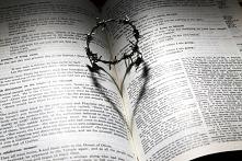 Czasami Pismo Święte wydaje...