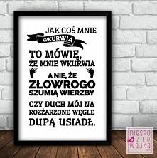 """Obrazek Ramka """"Szumią wierzby"""" Plakat A4 w czarnej lub białej ramce"""
