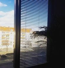 Zza okna biura.