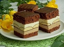 Mleczne ciasto z czekoladą i biszkoptami  BISZKOPT KAKAOWY:     4 jajka     3/4 szklanki cukru     1/2 szklanki mąki pszennej     2 łyżki mąki ziemniaczanej     1 łyżeczka prosz...