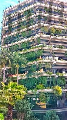 Wiecie że pionowy ogród w Barcelonie(edificio PLANETA) jest pionierem w tym e...