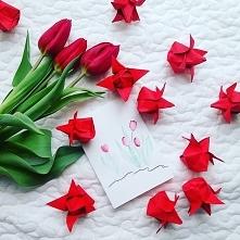 Tulipany i kartka z okazji ...