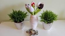 tulipany na sprzedaż, dostę...