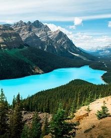 Jezioro Peyto w Kanadzie.