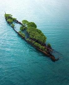 Wrak statku na Wyspie Magne...
