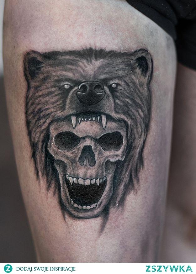 czaszka i skóra z niedźwiedzia