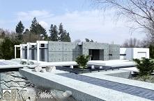 Alfa - nowoczesny, industrialny dom o surowym wyglądzie dla wymagających indywidualistów i odważnych inwestorów.