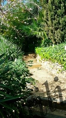 Ogród to moja oaza.