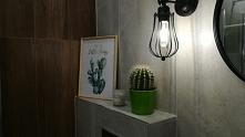 Kaktusowe love :)