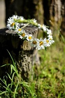 Wiosna, ach to ty <3