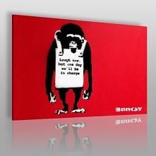Banksy - Małpa - nowoczesny...