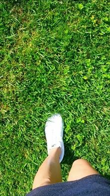 Czas na spacer;) Kocyk w łapkę i na zieloną trawkę; )