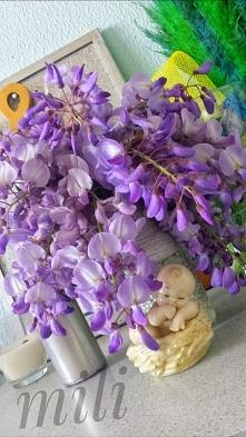 Z ogrodu do domu. .. piękny lecz bardzo delikatny kwiat drzewa sprawia że jes...