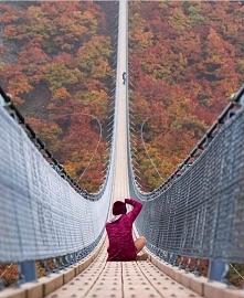 Geierlay -Najdłuższy wiszący most w Niemczech
