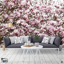 Fototapeta kwiaty magnolii. Do zastosowania w salonie, sypialni, łazience. We...
