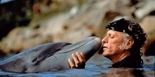 """Richard O'Barry; Zatoka delfinów;  Mija prawie 10 lat od kiedy mogliśmy zobaczyć przerażający film """"Zatoka delfinów"""". Pomimo, że wielu ludzi wspiera ratowanie del..."""
