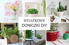 Doniczki DIY