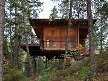 Domek w lesie :) Odkąd pami...
